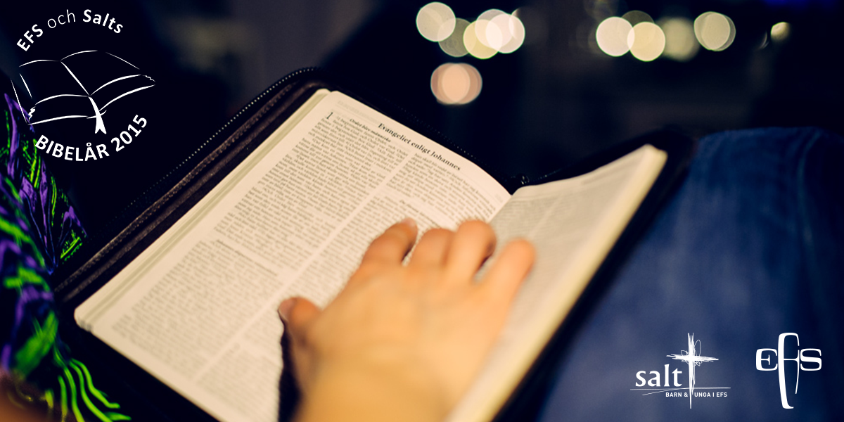 Bibelår 2015